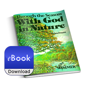 With God In Nature - Summer, eBook pic